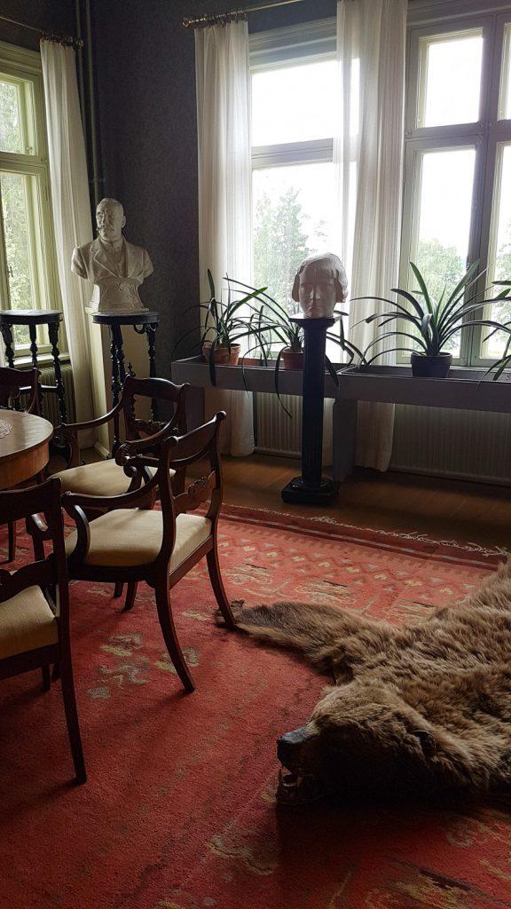 huone, jossa on lattialla karhuntalja