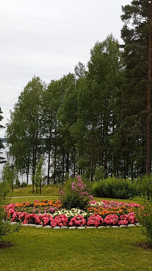 suuri pyöreä kukkapenkki nurmikon keskellä